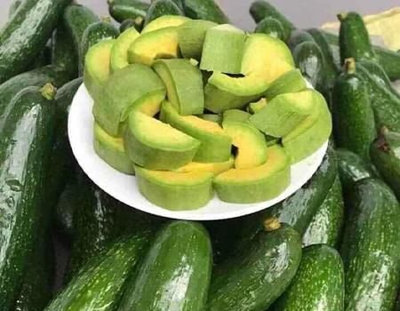 avocado export